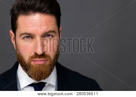 Handsome bearded man in a suit