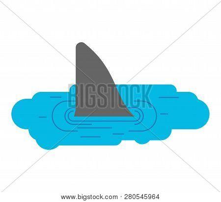 Shark In Puddle. Marine Predator In Small Plash