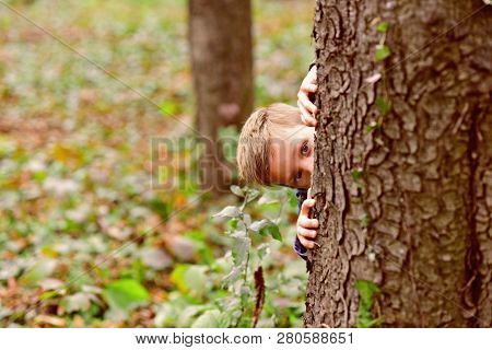 Let Your Kid Play. Little Boy Play Hide And Seek Game. Little Boy Play Nature. Every Day Get Outside