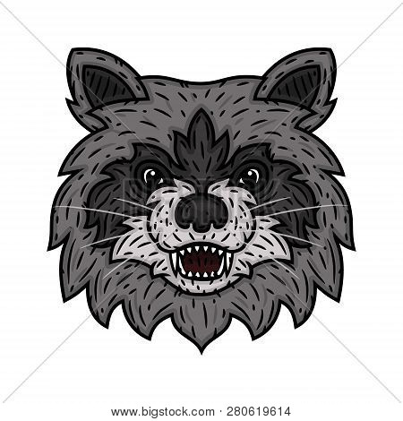 Angry Raccoon Face Vector & Photo (Free Trial) | Bigstock