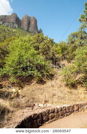 Chisos Mountains peak and green desert