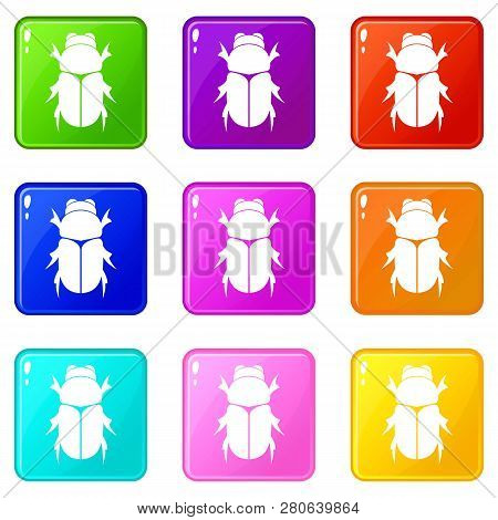 Chafer beetle icons of 9 color set isolated illustration poster