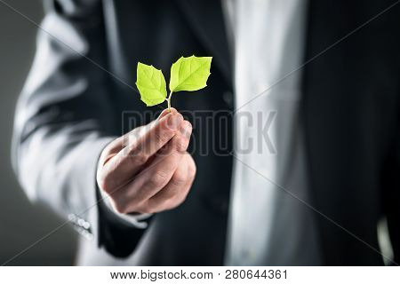 Eco Friendly Environmental Lawyer Or Business Man. Sustainable Development, Climate Change, Ecology