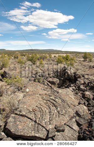 black lava rock field