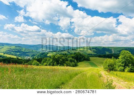 Path Through Beautiful Summer Countryside. Grassy Meadow Among The Forest. Trees Along The Road. Won