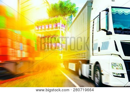 Commercial Transport .  Truck Transport Container . Open Delivery Truck Loaded With Pot Plants Palle