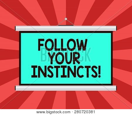 Conceptual hand writing showing Follow Your Instincts. Business photo showcasing listen to your intuition and listen to your heart Portable Wall Projection Screen for Conference Presentation. poster