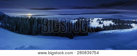 Panorama Of A Beautiful Winter Landscape At Night In Full Moon Light. Spruce Forest On A Snow Covere