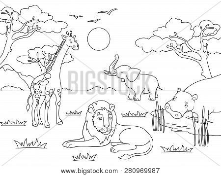 Children Drawing. Animals Of Africa, Mainland Mammals, Zoo. Vector Coloring, Black And White Colorin
