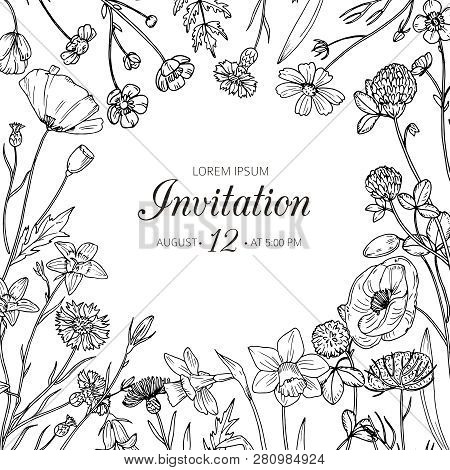 Wildflower Background. Wedding Invitation With Summer Wild Meadow Flowers. Spring Floral Retro Sketc