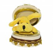 open bijouterie box with small yellow dog poster