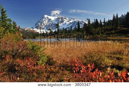 Fall Color At Picture Lake And Mount Shuksan