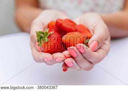 Close Up Of Fresh Red Strawberries With Green Leave In Woman Hand On White Scene. Selective Focus