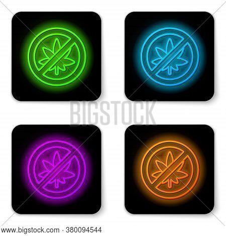 Glowing Neon Line Stop Marijuana Or Cannabis Leaf Icon Isolated On White Background. No Smoking Mari