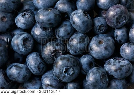 Blueberry Texture Background, Fresh Blueberry Or Bilberry Berries Closeup. Pattern Of Lots Of Bluebe