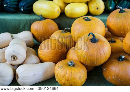 A Variety Of Winter Squashes On Display At At The Davis Farmers Market In California, Usa