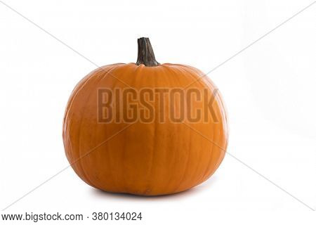 One big orange pumpkin isolated on white background