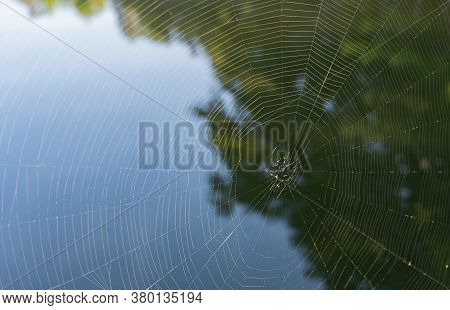 Close-up Of The Threads Of A Circular Spider's Web With The Reflection Of A Tree In The Water Behind