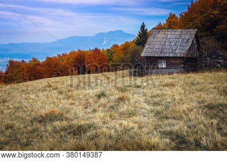 Beautiful Autumn Alpine Scenery, Rickety Wooden Hut Near Colorful Deciduous Forest And High Mountain