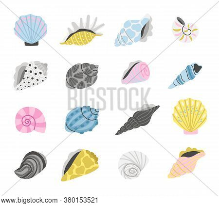Marine Seashells. Cartoon Sea Shell Objects, Hand Drawn Colorful Shells, Elements Of Concept Of Ocea