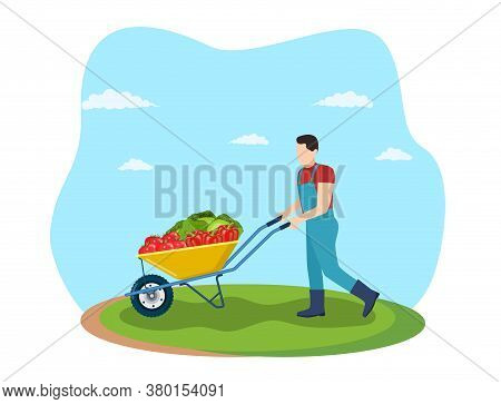 Farming Man Pushing Wheelbarrow With Cabbage, Peppers, Tomatoes. Natural And Tasty Food. Organic Far