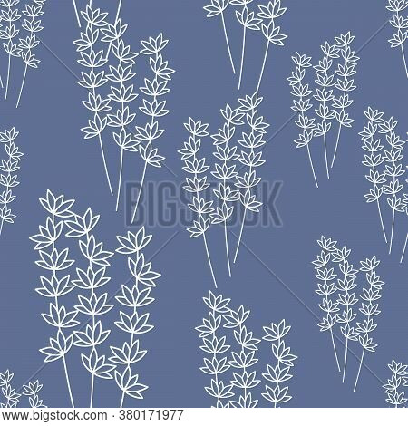 Seamless Pattern With Branches Of Simple Flowers . Contour Botanical Design . Vector Illustration On