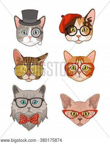 Hipster Cat. Funny Cats Avatar With Hats And Bow Tie, Glasses And Sunglasses, Animals Portrait Smart