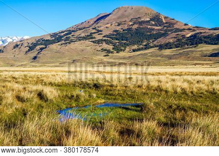 Pampas surround the snow-capped mountains. Small puddles and streams overgrown with grass. Argentina, Patagonia. Pampas of South America