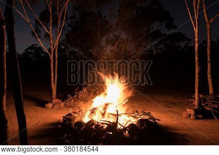 Camp Fire Burning At Night In Australian Outback With Gum Trees (eucalyptus Trees) Around