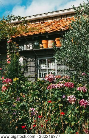 Grey Painted Wooden Garden Hut With Hydrangeas. High Quality Photo