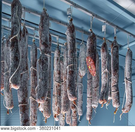 Tasty Gourmet Salami. Salami With Pistachio Hanging In The Warehouse