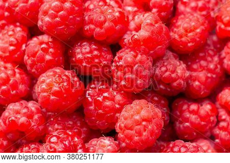 Macro Photo Food Raspberry Berry. Texture Background Ripe Pink Raspberry Berry. Image Food Product.