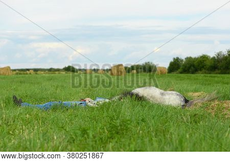 The Gray Pony And Its Caucasian Female Owner Are Lying On The Beveled Field. The Female Owner And He