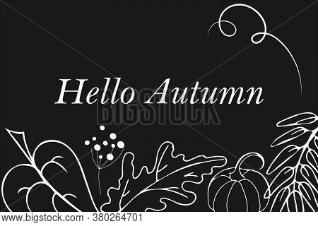 Frame Of Autumn Hand Drawn Images. White Silhouttes On Chalkboard Background. Isolated Leaves Of Ash