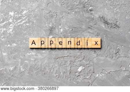 Appendix Word Written On Wood Block. Appendix Text On Table, Concept