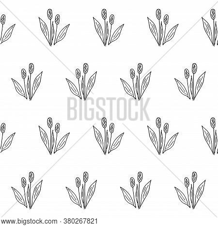 Plantain Plant Sketch Seamless Pattern. Hand Drawn Ink Art Design Object Isolated Stock Vector Illus