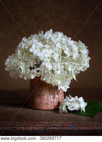 Hydrangea In A Clay Vase. Hydrangea Inflorescence On A Dark Background. Still Life With Flowers. Sel