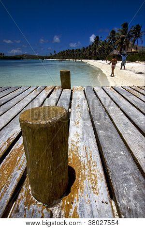 Isla Contoy Mexico,the Harbor