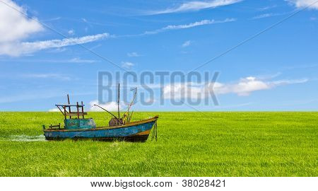 Boat in a field background