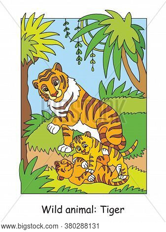 Vector Coloring Pages With Cute Tiger Family In Forest. Cartoon Isolated Colorful Illustration. Stoc