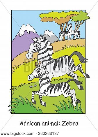 Vector Coloring Pages With Cute Zebra Family In African Area. Cartoon Isolated Colorful Illustration