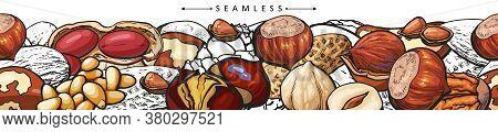 Seamless Banner Of Hand Drawn Brown Nuts - Hazelnut, Peanut, Pine Nut, Walnut In Horizontal Line Dra