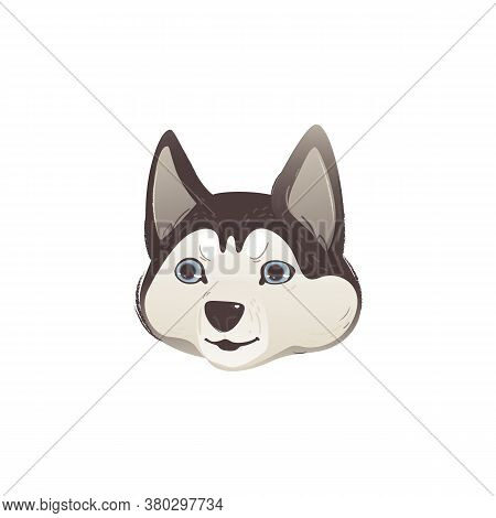 Siberian Husky Dog Walking With Happy Face - Isolated Cute Pet Animal