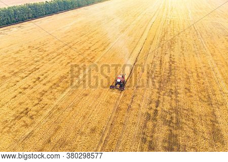 Agriculture Machine Harvesting Crop In Fields. Harvesting In Autumn In The Morning At Dawn. Agribusi