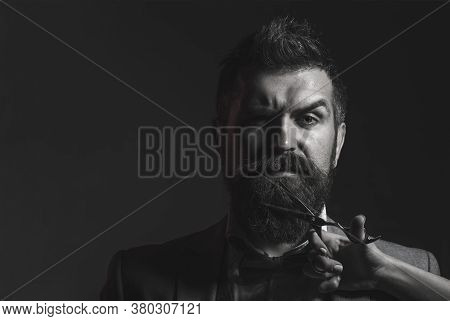 Barber Scissors And Straight Razor, Barbershop. Mens Haircut, Shaving. Bearded Man, Long Beard, Brut