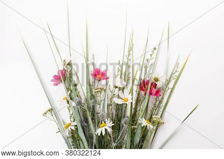 Festive Bouquet Of Pink And Purple, White Wildflowers, Cosmea, Herbs On A White Background