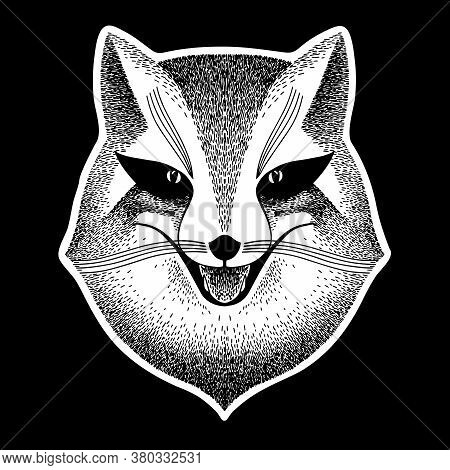 Fox. Stylized Portrait Of A Sly Fox On A Black Background. Sly Fox Smiles. Black And White Sketch. L