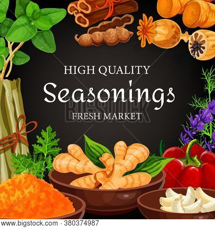 Seasonings, Herbs, Cooking Condiments, Vector Farm Food Vegetables. Farm Herbs And Seasonings Garlic