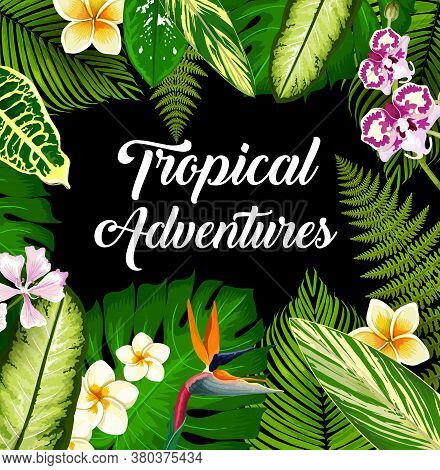 Tropical Plants And Flowers, Vector Poster, Exotic Palm Leaves And Blossoms. Hawaiian Jungle Monster