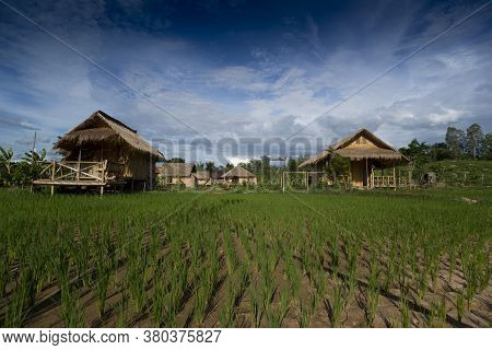 View Of Cottage  Farmer  In Thailand